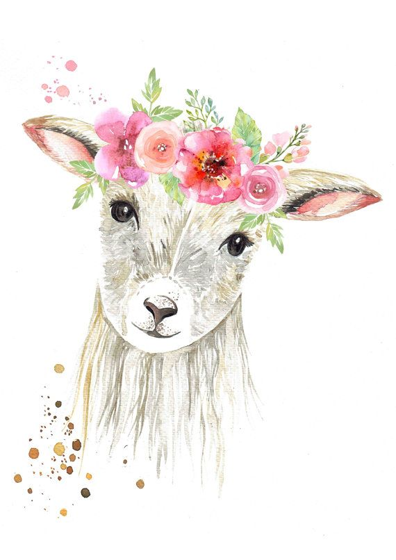 Sweet Lamb With Flower Crown Print In 2020 Crown
