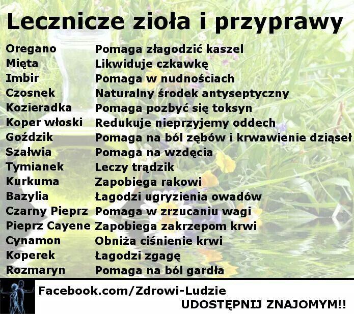 Lecznicze zioła i przyprawy