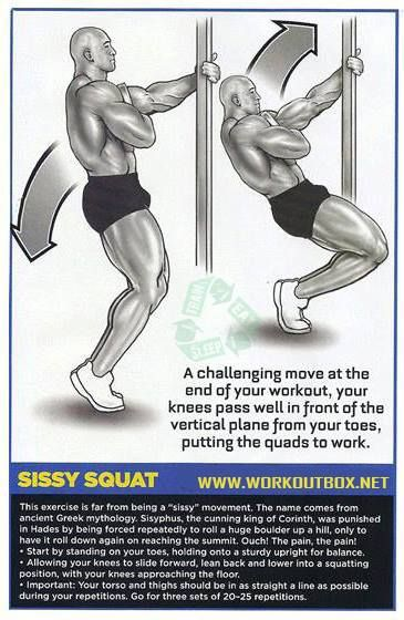 Sissy Squat Workout! Way better on the knees than leg extensions!