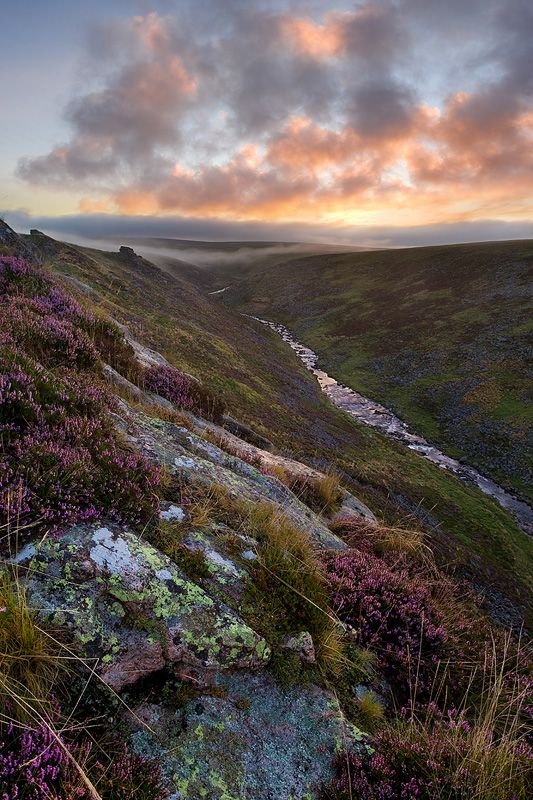 tavy cleave, dartmoor, UK  https://www.facebook.com/stokelodgehotel  #Dartmouth