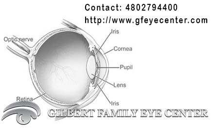 Forget your eye problems with laser eye center Arizona. Laser treatment is the most visited treatment for vision problem because it is quick effective and painless treatment. http://www.gfeyecenter.com/lasik-eye-surgery-phoenix/