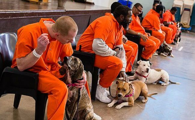 Going To Prison Was The Best Thing That Ever Happened To These