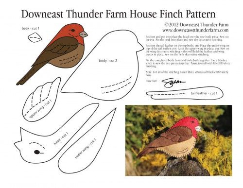 house-finch-pattern, Stuffed Animal Pattern, How to Make a Toy Animal Plushie Tutorial Plushies Tutorial , BIRDS Diy Projects, Sewing Template , animals, plush, soft, plush, toy, pattern, template, sewing, diy , crafts, kawaii, cute, sew, pattern,free bird template, bird, handmade, free pdf