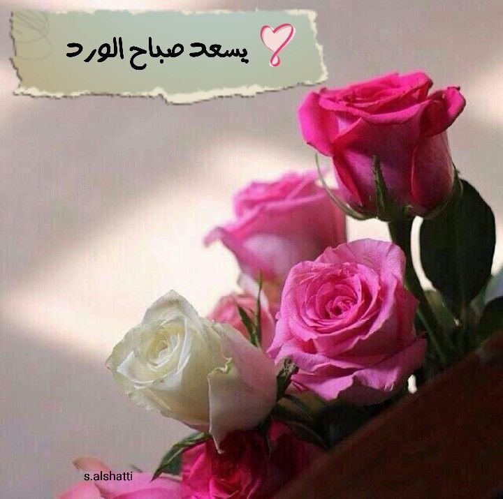 يسعد صباح الورد Good Morning Flowers Good Morning Arabic Islamic Pictures