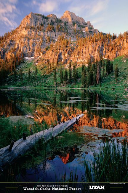 White Pine Lake WasatchCache National Forest  Places  Utah camping Utah adventures Travel