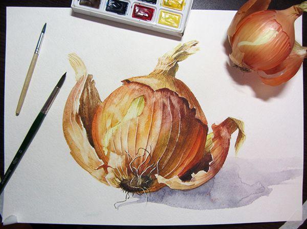 Onion (many) on Behance