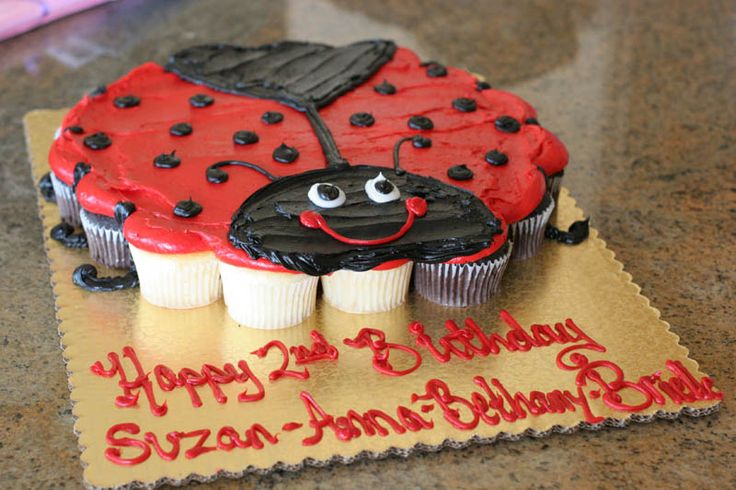 Ladybug Cupcake Cake | Brielle, very excited to be the first birthday girl to get her crown ...