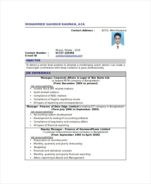 Chartered Accountant Resume Template 5 Free Word Pdf Chartered