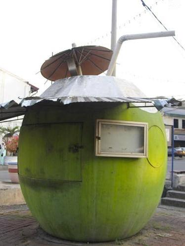 Giant Coconut, Raub, Malaysia