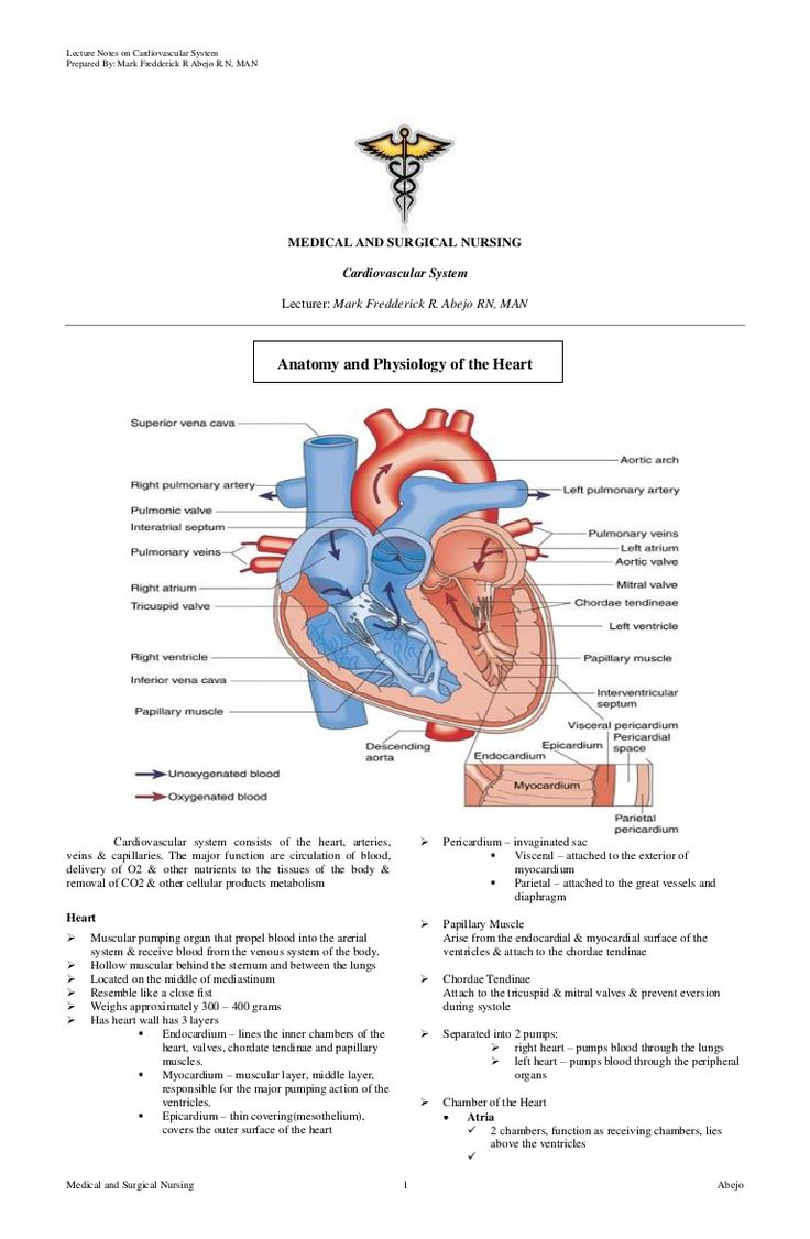 cardiovascular-nursing by Mark Fredderick Abejo via Slideshare