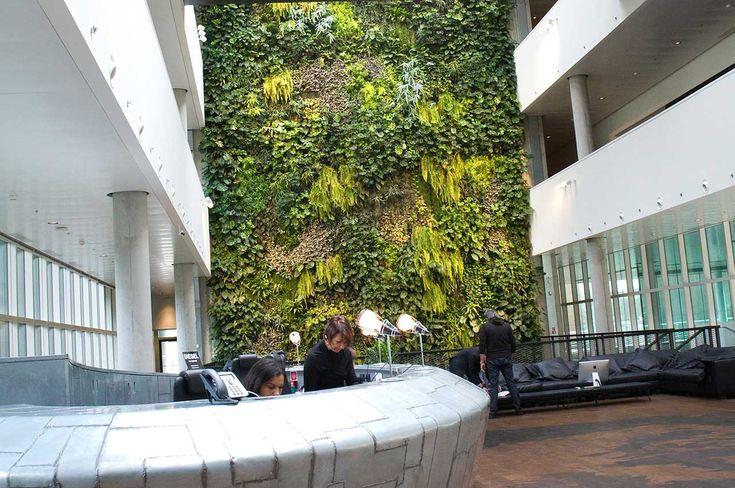 Giardino verticale interno prodotti sundar italia - Giardino verticale interno ...