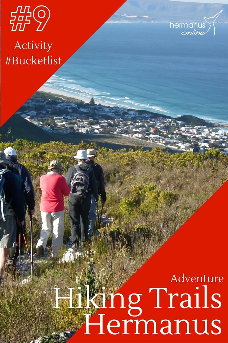 #9 / 10 - Hermanus Activity Bucketlist: Hiking in Fernkloof and on the Cliff Path