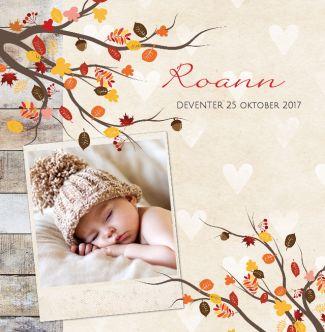 Herfst foto geboortekaartje met hartjes achtergrond, herfst tak en hout. Gebruik deze kaart en maak hiervan zelf je eigen persoonlijke geboortekaartje. Wil je de kaart door ons laten opmaken? Geen probleem, wij helpen je graag!