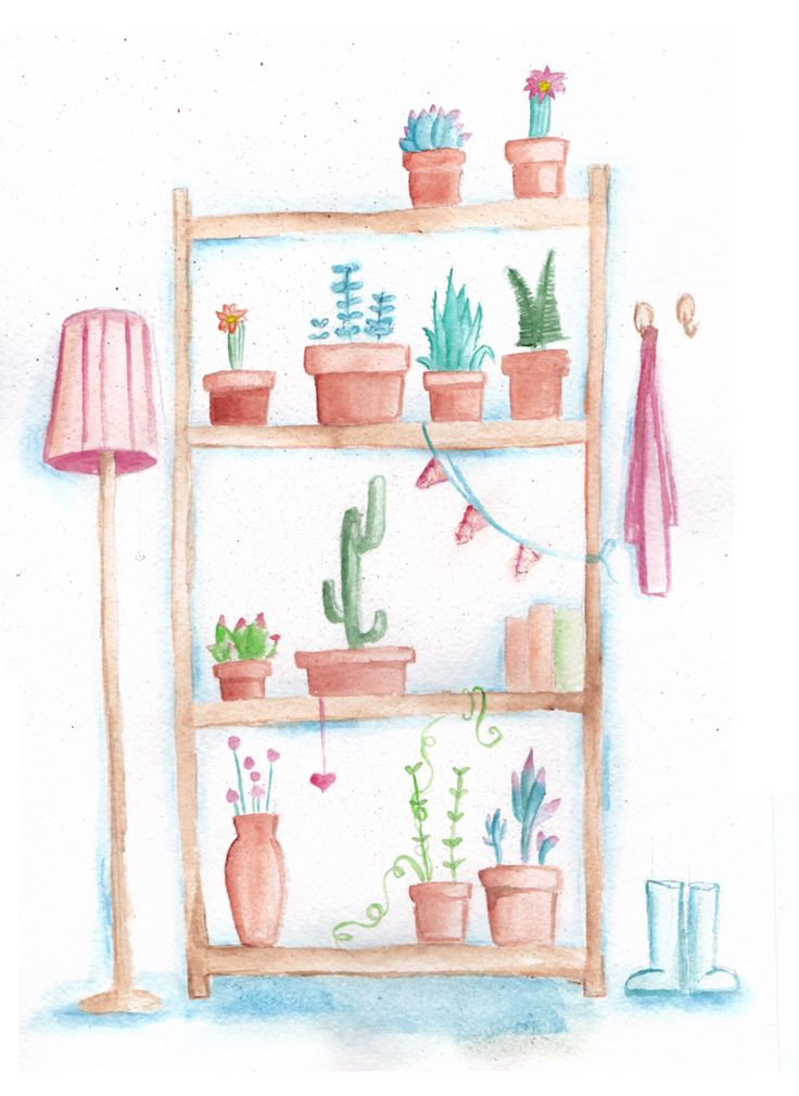 Cupboard for cactuses and succulents by mariaptore