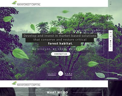 "Check out new work on my @Behance portfolio: ""Rainforest Capital UI - web design."" http://on.be.net/1BI2V6P"