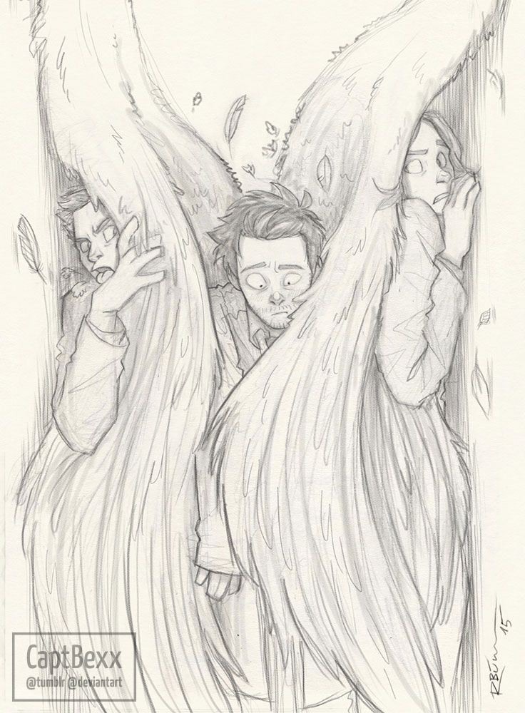 captbexx: Dean, Cas and Sam… And Cas' wings…XD I don't even know. XD