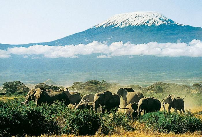 KILIMANJARO - Climb to the Roof of Africa!