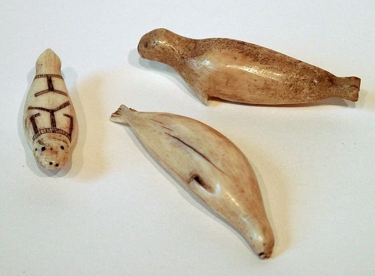 Walrus ivory fur seals arctic and cabinet pinterest