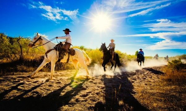 Does Tanque Verde Guest Ranch Have the Best Sunday Brunch in Tucson?