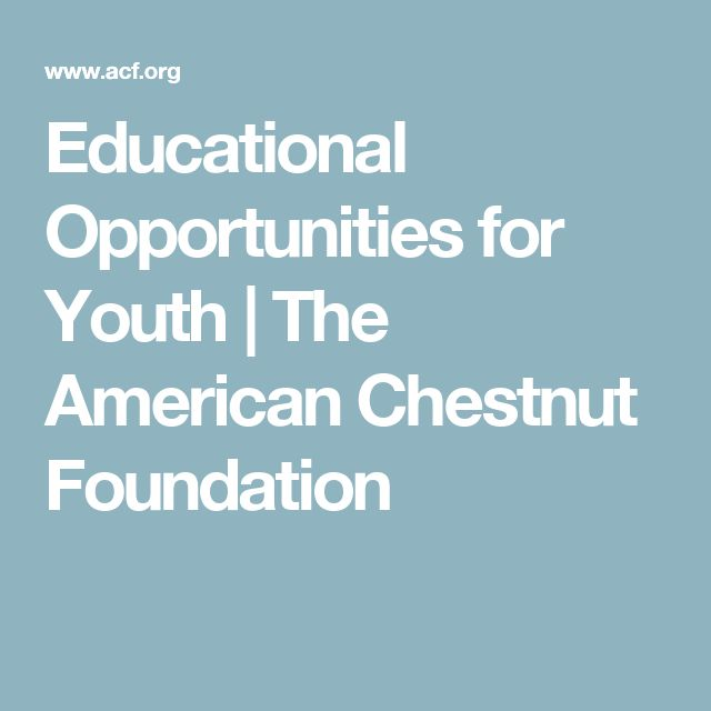 Educational Opportunities for Youth | The American Chestnut Foundation