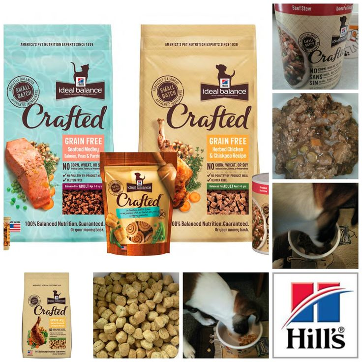Hill S Ideal Balance Crafted Cat Food