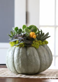 Six Tips for Keeping the Chic in Your Spooky -- Many of these projects would transfer well to your Thanksgiving decor!
