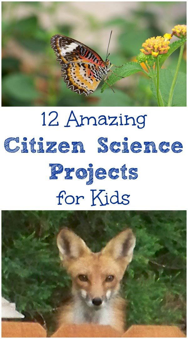 Get involved in real life science projects with these wonderful hands-on opportunities available to kids & families!