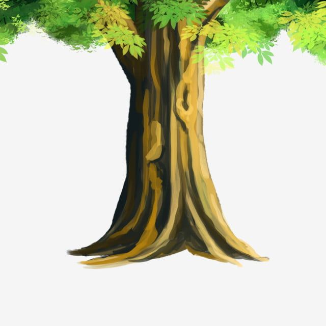 Cartoon Plant Big Tree Trees Design Diagram Cartoon Plant Png Transparent Clipart Image And Psd File For Free Download Cartoon Trees Big Tree Watercolor Trees