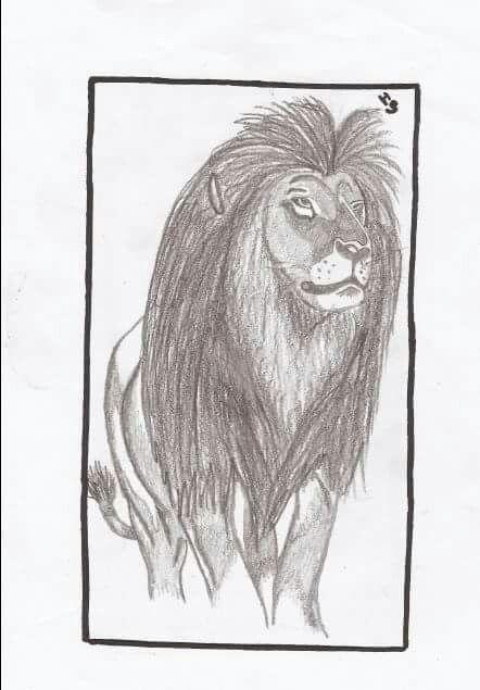 #art #draw #lion #blackandwhite