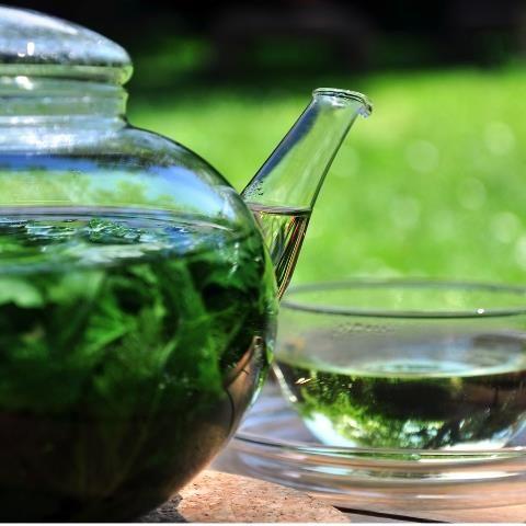Zelf thee maken van kruiden