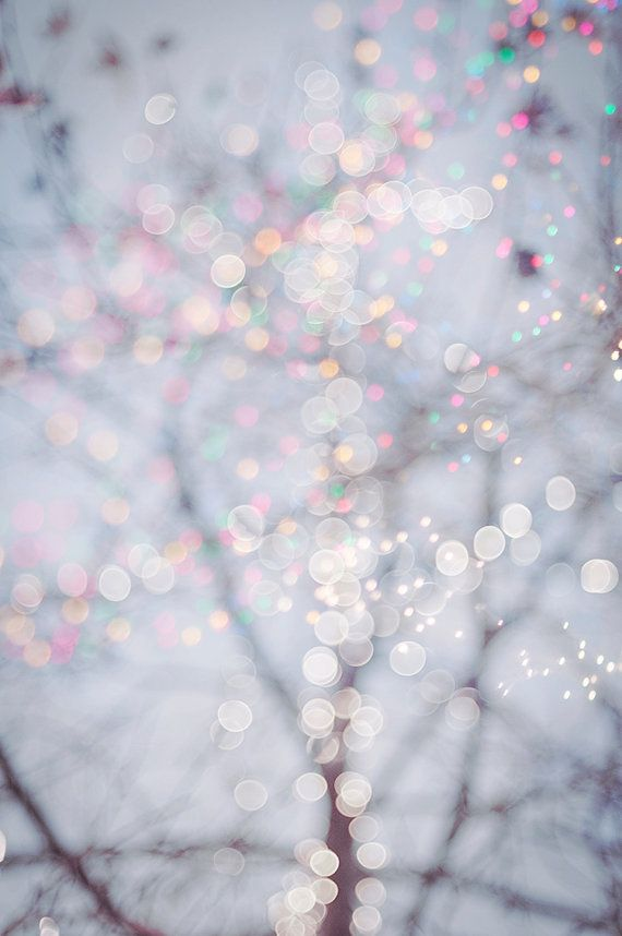 Fine Art Winter Photography  Title: All is Bright Fairy lights twinkle among winter trees in a festive holiday scene.    This listing is for a