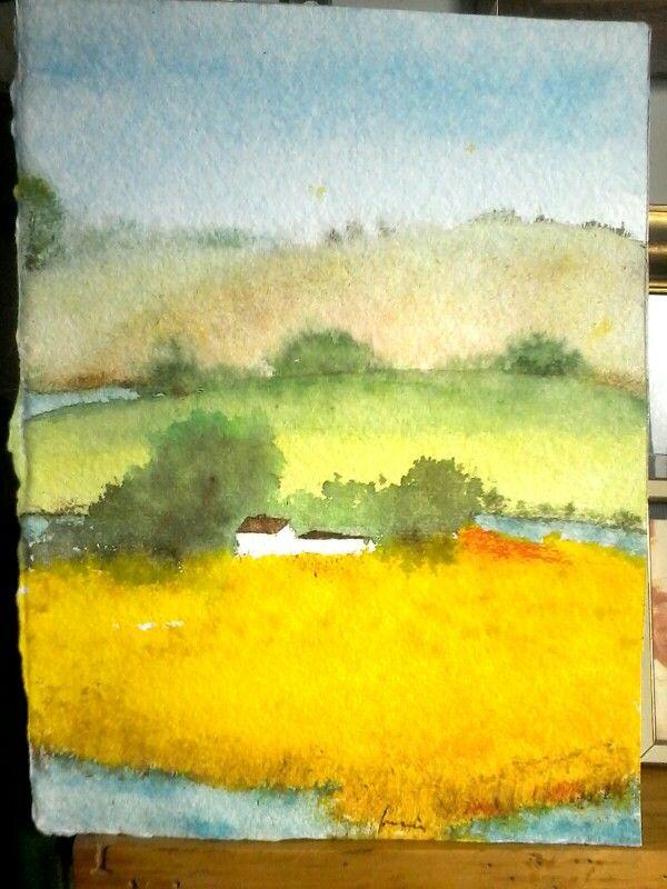 Campi di grano a fior d acqua.acq.su carta grossa Fabriano.