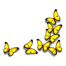 Image result for yellow closed butterfly tattoo