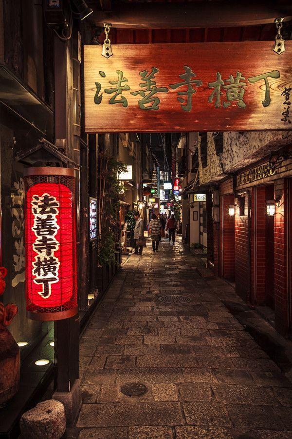 Hozenji Yokocho (Alley), Osaka, Japan 法善寺横丁