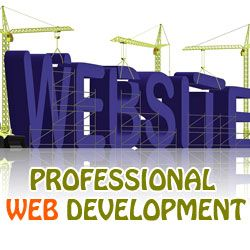 Professional Web Development