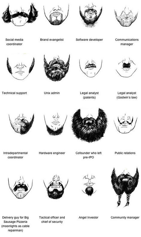 Beard taxonomy