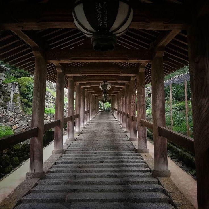 Alla fine del tunnel c'è sempre una luce #Giappone #Japan