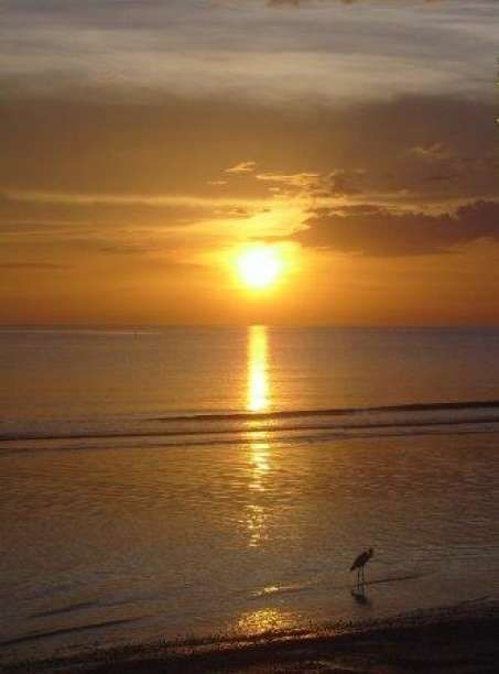 Marco Island, Florida - Best of the Road