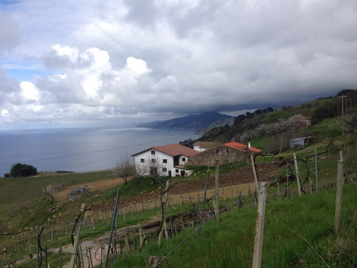 #Getaria #basquetrips #basquecoastline #txakoli #wine #travel #Holidays