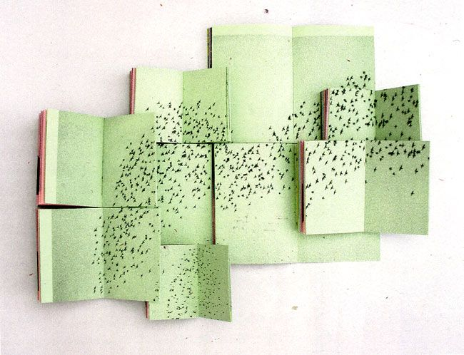 Superpositions - Formes Vives, le blog