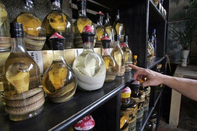 Vinho de Cobra: Chinesa é picada por serpente preservada por meses em álcool | #álcool, #China, #Cobra, #Estimulante, #Serpente, #TratamentoDeSaúde, #Veneno, #Vinho
