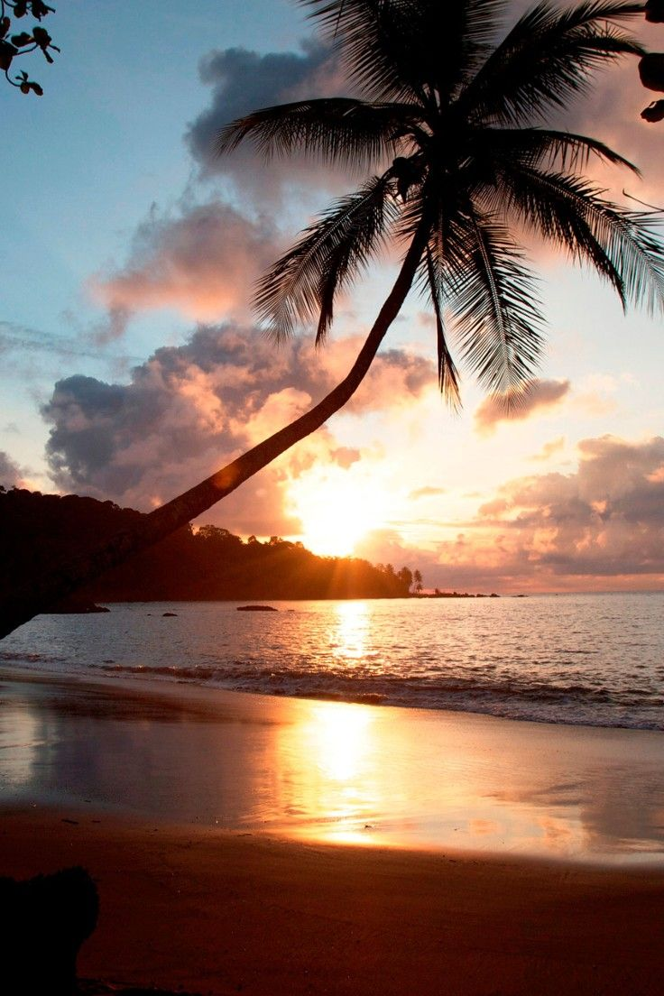 Copa de Arbol Beach & Rainforest Resort - Costa Rica - The most spectacular sunsets can be seen on the resort's stretch of sand.