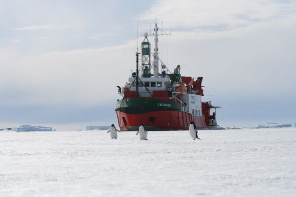The French supply ship L'Astrolabe taking a 'break' in sea ice en route from Hobart to the French Antarctic base, Dumont D'Urville. Credit: Dale Kolody