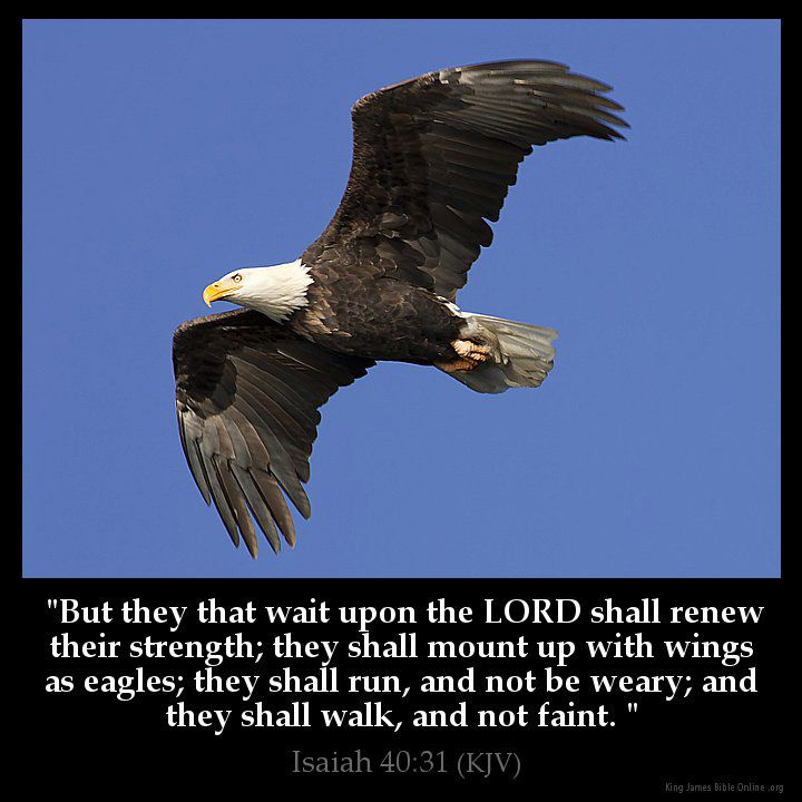 Isaiah 40:31  But they that wait upon the LORD shall renew their strength; they shall mount up with wings as eagles; they shall run and not be weary; and they shall walk and not faint.  Isaiah 40:31 (KJV)  from King James Version Bible (KJV Bible) http://ift.tt/1KMEyZ0  Filed under: Bible Verse Pic Tagged: Bible Bible Verse Bible Verse Image Bible Verse Pic Bible Verse Picture Daily Bible Verse Image Isaiah 40:31 King James Bible King James Version KJV KJV Bible KJV Bible Verse Pic Picture…