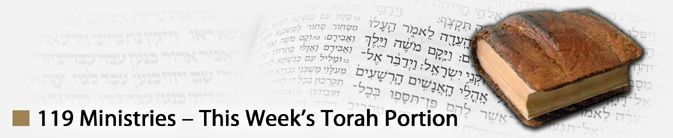 Torah Portion | 119 Ministries