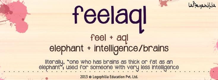 Logophilia Edu. Pvt. Ltd. | Pioneers in Etymology Education – Lafzophilia: feelaql