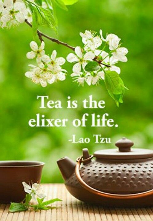 Tea is the elixer of life. ~Lao Tzu Thank you for following my boards. You may pin at your heart desire, I Just ask That you be considerate & Don't raid my board. Thank you