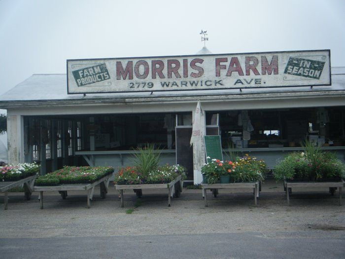 Image result for morris farm ri