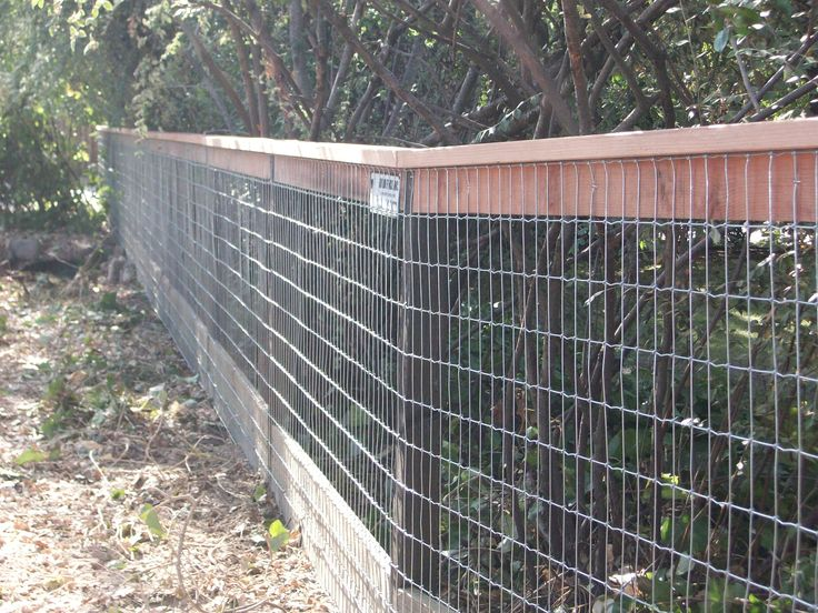 17 Best Images About Hog Wire Fences On Pinterest