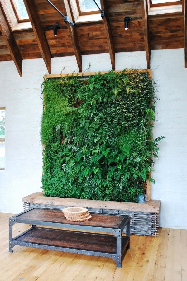 Creative DIY Indoor Gardens  It may be too labor intensive, but I've seen them and they are beautiful.